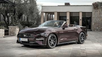 Ford Mustang main